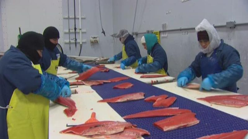 Neighbors fight fish processing plant for Pacific fish company